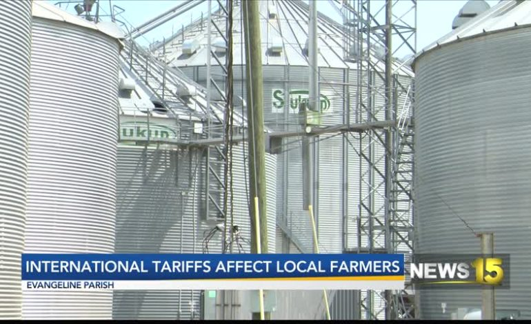 Evangeline Parish Farmer Supportive Of President's Tariffs Despite Feeling Sting Of International Tariffs