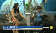 Pet Tips with Ally Locklin