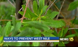 West Nile Virus Detected In Louisiana, At Least 9 People Affected, How To Safeguard Your Home