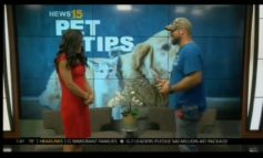 Pet Tips With Alex Covington