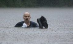 Tropical Storm Imelda: Texas Man Trying to Save Horse From Flood Drowns After Electrocution, Family Says