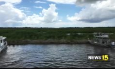 Cole's Bayou Marsh Restoration Project Is Complete