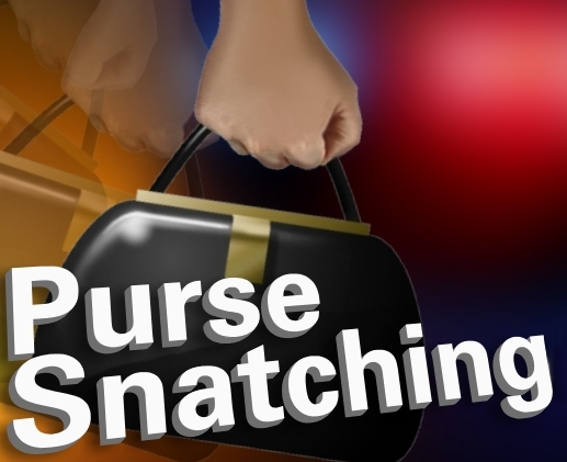 Arrest Made After Alleged Purse Snatching on UL Campus