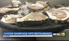 Oyster Shortage Hits Acadiana Restaurants