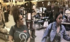 Lafayette Police Need Your Help Identifying Theft Suspects