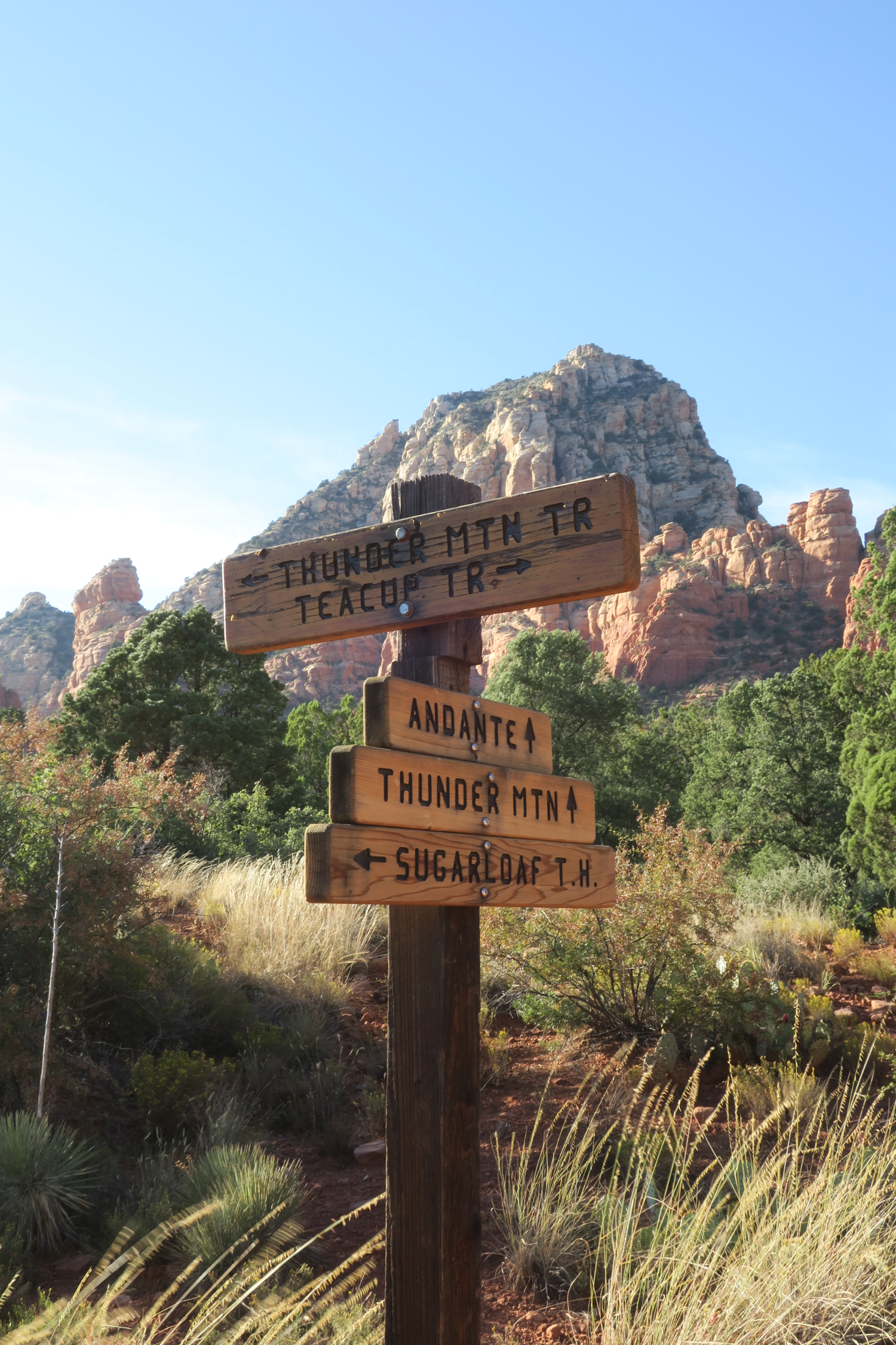 Signs pointing to hiking trails