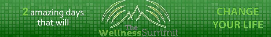 Summit-banner
