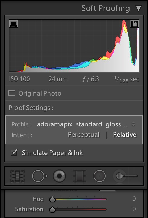 Expert Exporting Tips for Lightroom