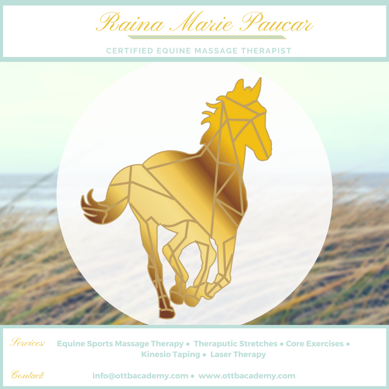 Equine Massage Therapy for Peak Performance and a Competitive Edge