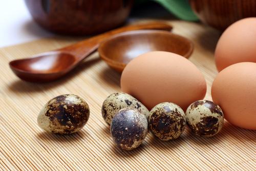 Quail Eggs ~JulieDaniluk.com