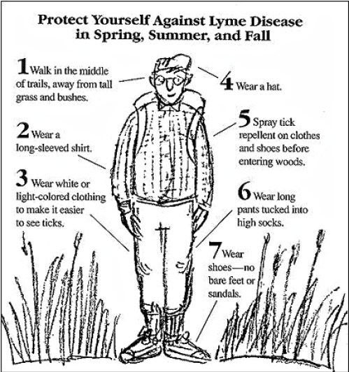 Nutritionist Julie Daniluk's information about ticks and