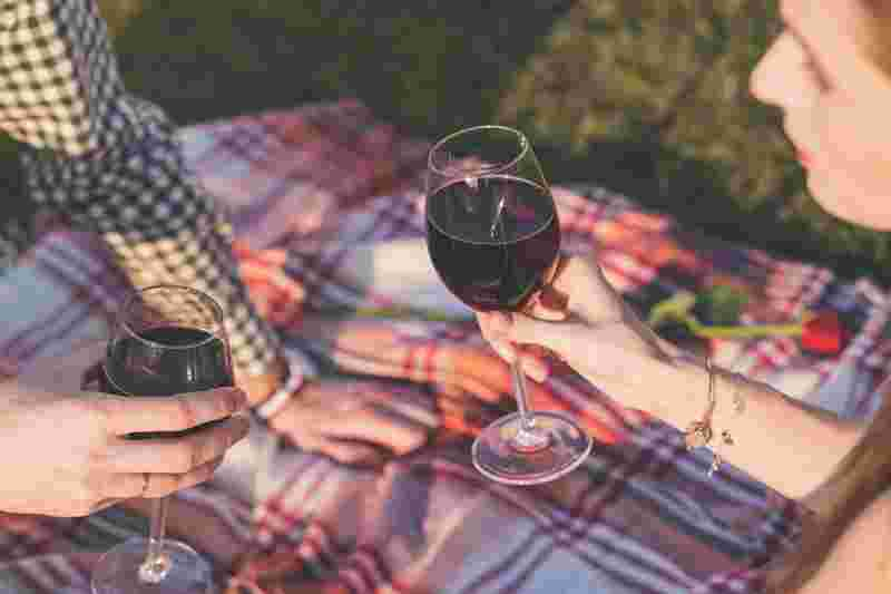 drinking alcohol together at a field during picknick
