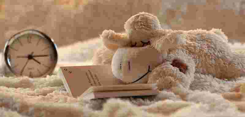 picture of a stuffed animal laying on bed reading, symbolizing a joke