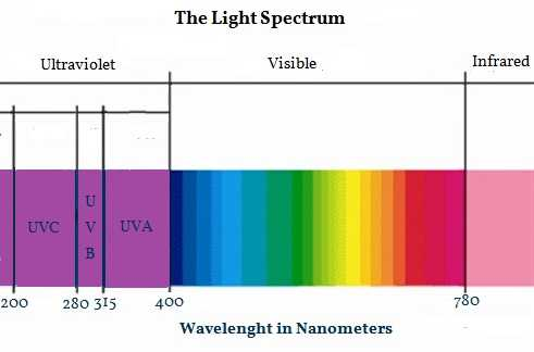 the light spectrum with ultraviolet, visible and infrared light displayed and their nanometer wavelenghts