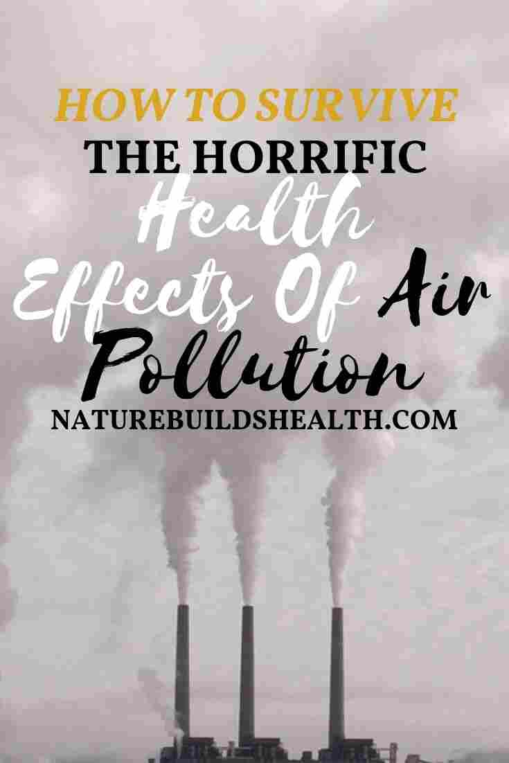 cover photo of this blog post that shows polluted air
