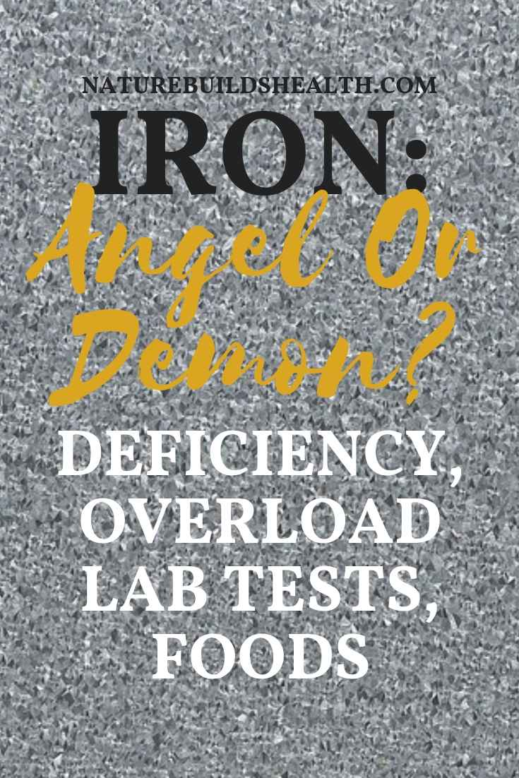 Iron Angel Or Demon Iron Deficiency Foods Lab Tests And Overload