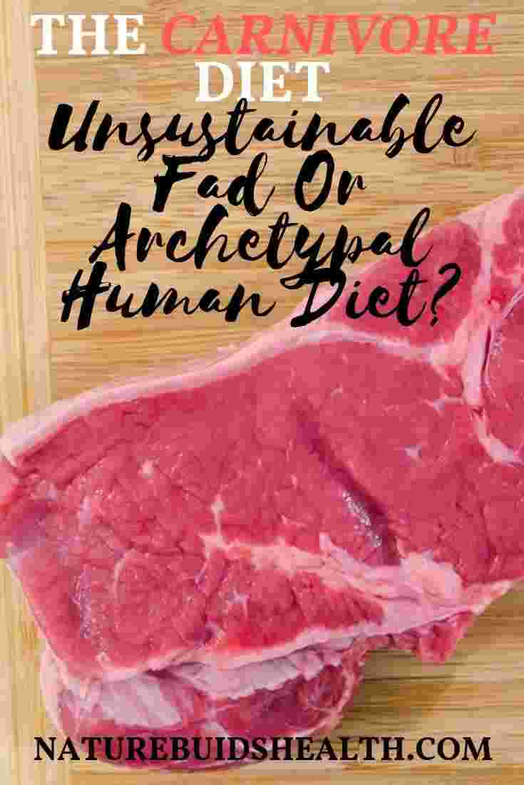 cover photo for this blog post questioning whether the carnivore diet is THE ancestral diet or a fad