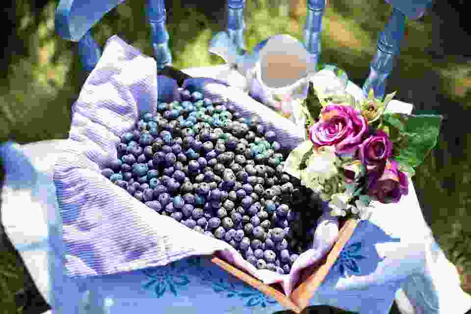 blueberries make some people fat by just LOOKING at them