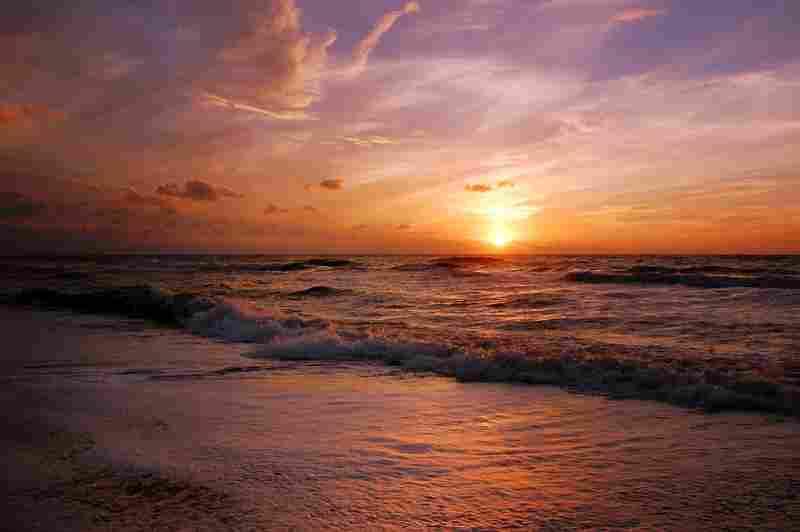 a sunlit beach
