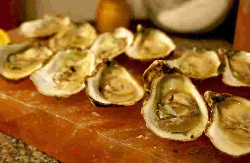oysters are the best solution to the problem described in this blog post