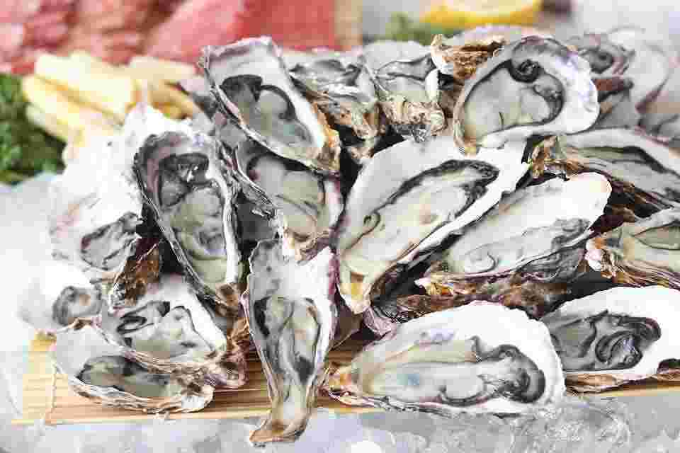 oysters are displyed because they are the most nutrient dense food on the planet