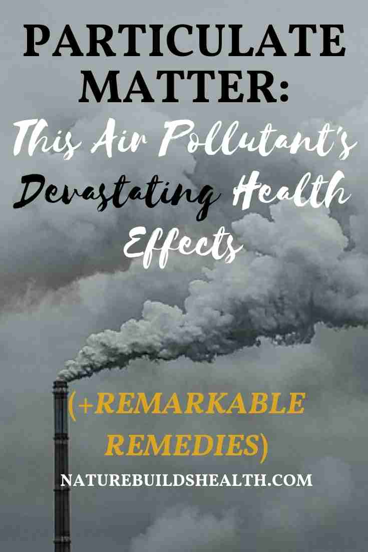 the cover of this blog post that describes how particulate matter is devasting to your health