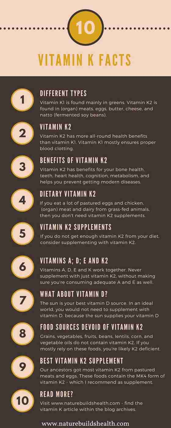 infographic displaying the most important vitamin K2 facts