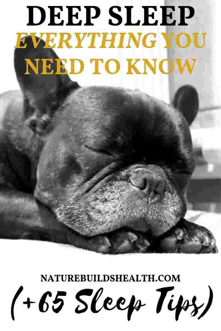 cover photo of this blog post about deep sleep, with a sleeping dog as a metaphor