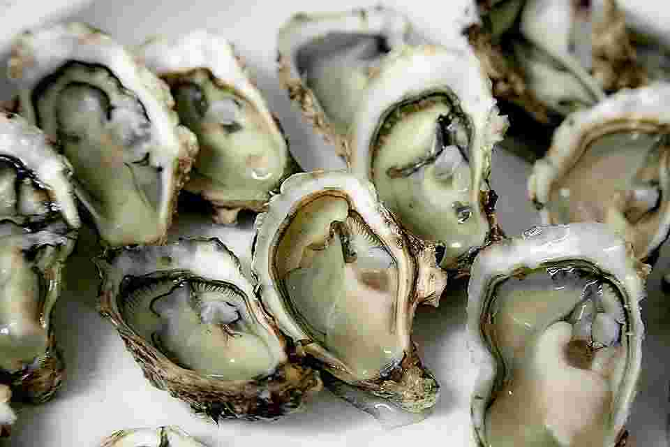 oysters are the best source for heme iron