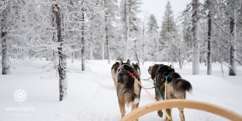 Dog sledding is a fun way to traverse northern Sweden and these furry friends love to run!