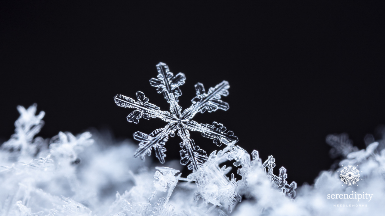 Up close with snowflakes!