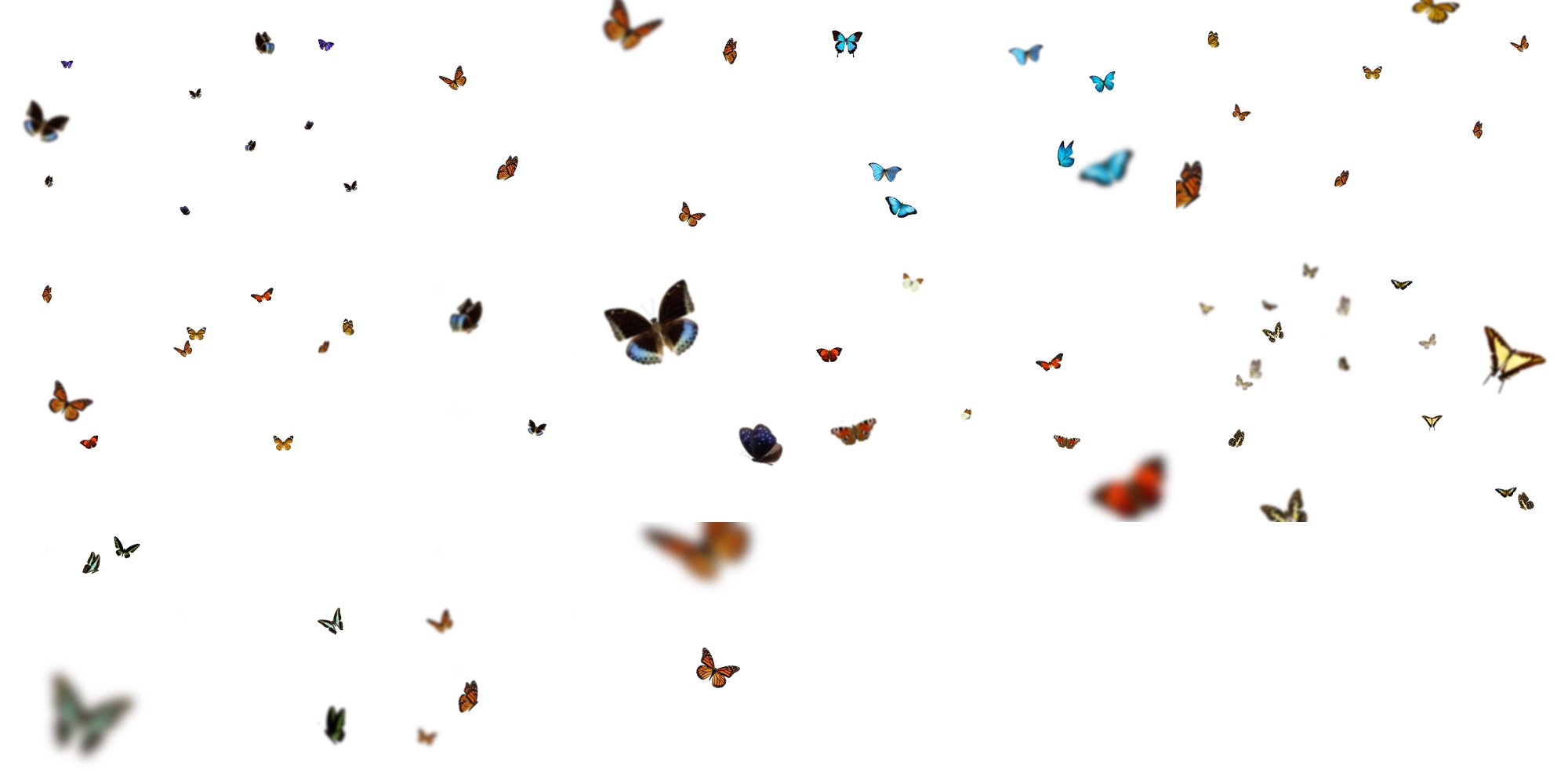 Butterfly Whispers - Overlay and Photoshop Action Collection