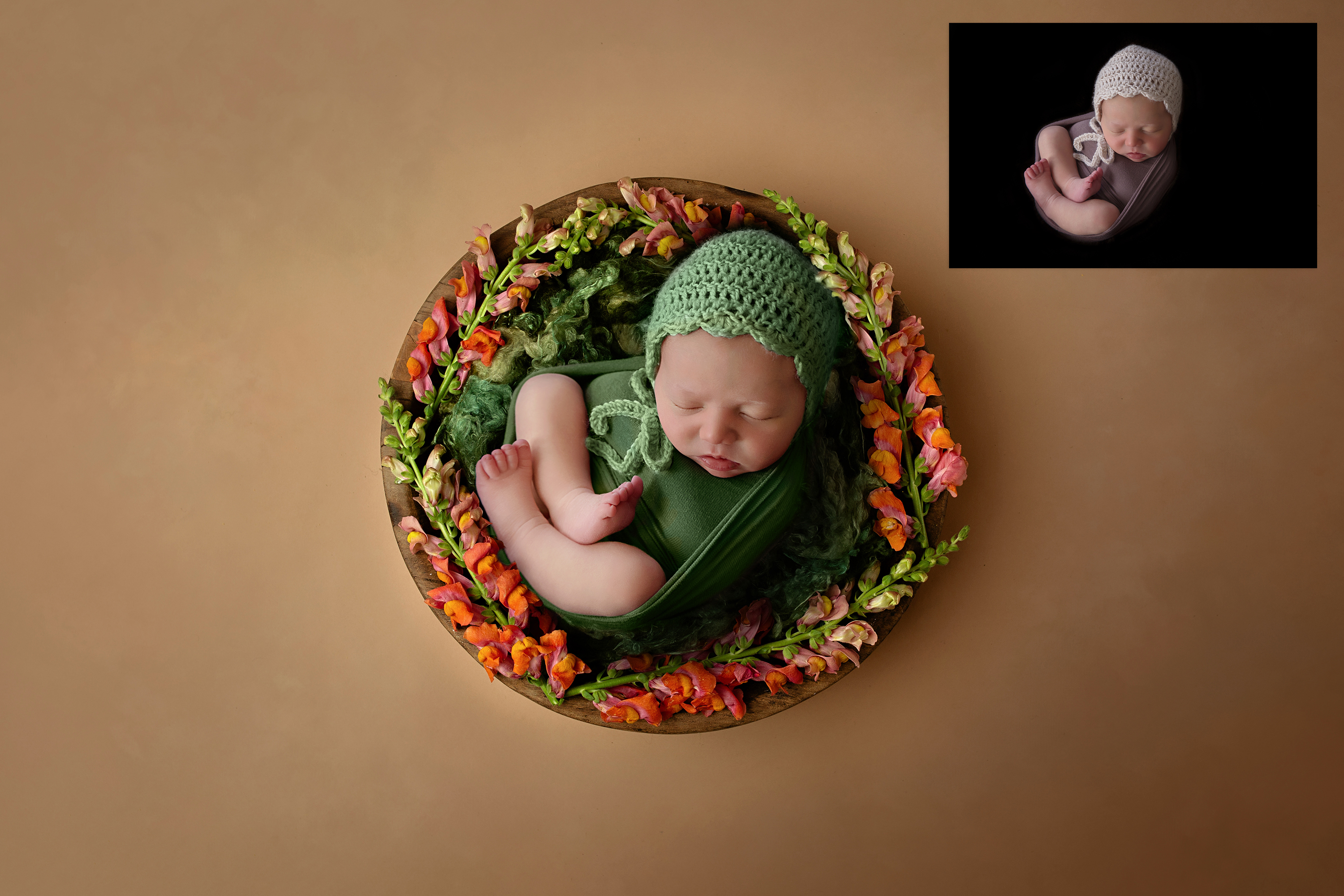 Professional Background Images For Baby Photo Editing Baby Viewer