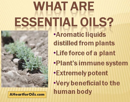 Essential Oils Their Uses
