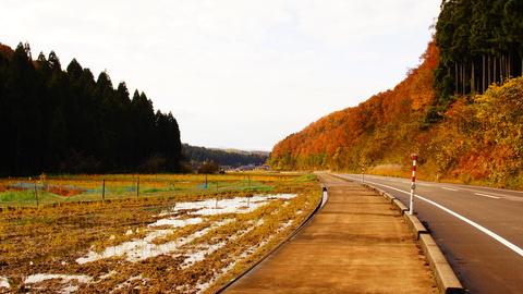 遊泉寺へ向かう快走路