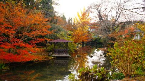 庭園の景観