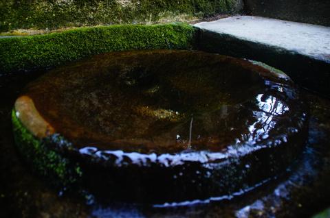 プルンとした湧水