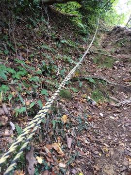 急な登坂のところどころにロープ