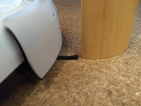 テーブル足周りをクルクルまわる