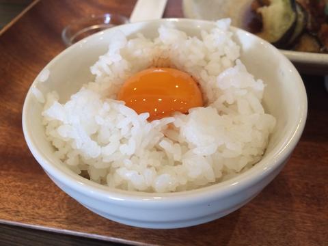 卵かけ用卵黄もおすすめ