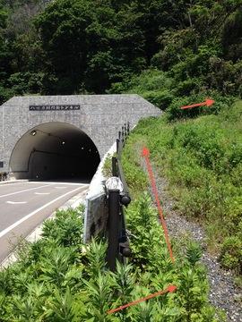 八世乃洞門トンネル横の登山口より
