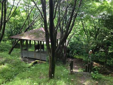 東屋もあり。森の中で食事など