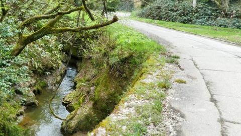 渓流は右側から左側へ