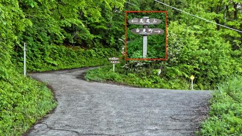 高尾山の案内に従い左の道へ