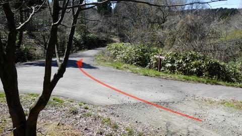 ここからは少しだけ舗装路(枯れ葉で歩きやすい)