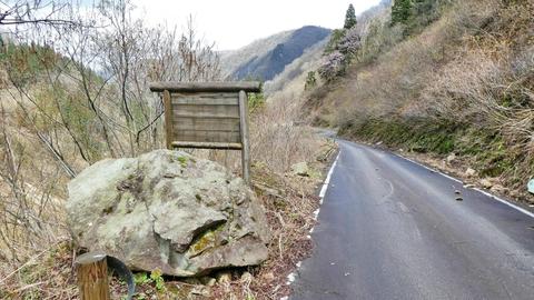 ところどころ見かける無記載の木の看板