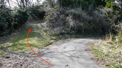 ここを左で舗装路は終了