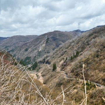 振り返ると今登ってきた道。加賀幹線と東金津線の鉄塔が並走してる