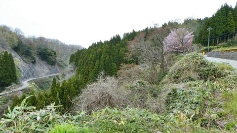 向かい側の峠道が見える、下は先程の森下川に繋がる支流