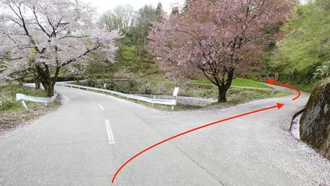 溜池があるので右で松根城への近道